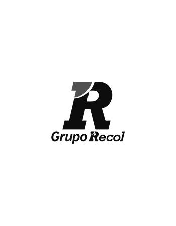 GINO FIBRASE UNG C/30GR+APLIC (R20)